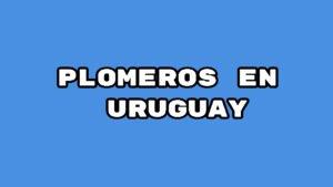 PLOMEROS EN URUGUAY